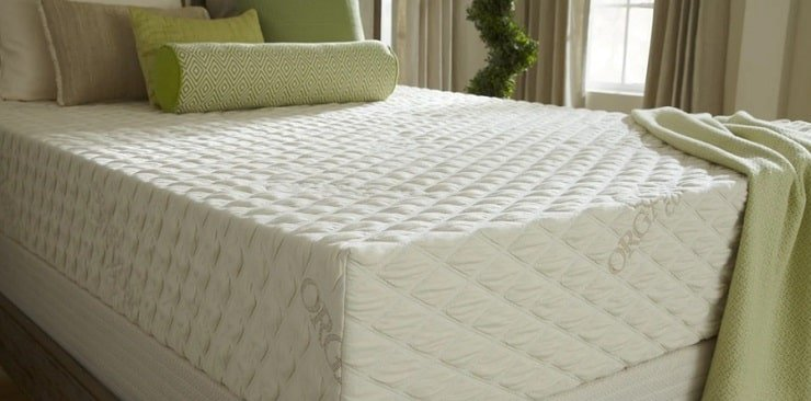 The Natural Bliss Natural Mattress From PlushBeds.