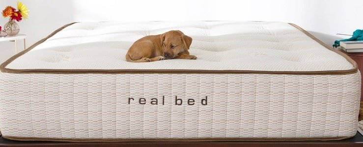 The Real Bed Mattress.