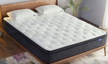 The Twilight Mattress.