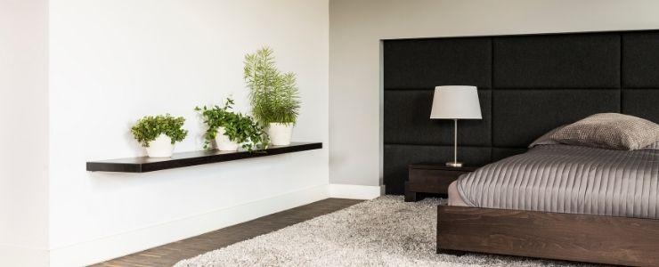 Plants in Minimalist Bedroom