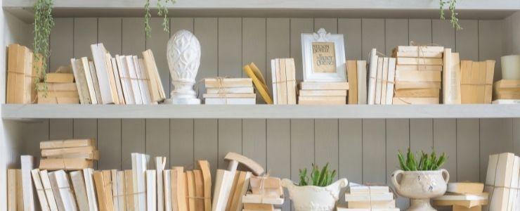Painted Bookshelves On Wallpaper Design