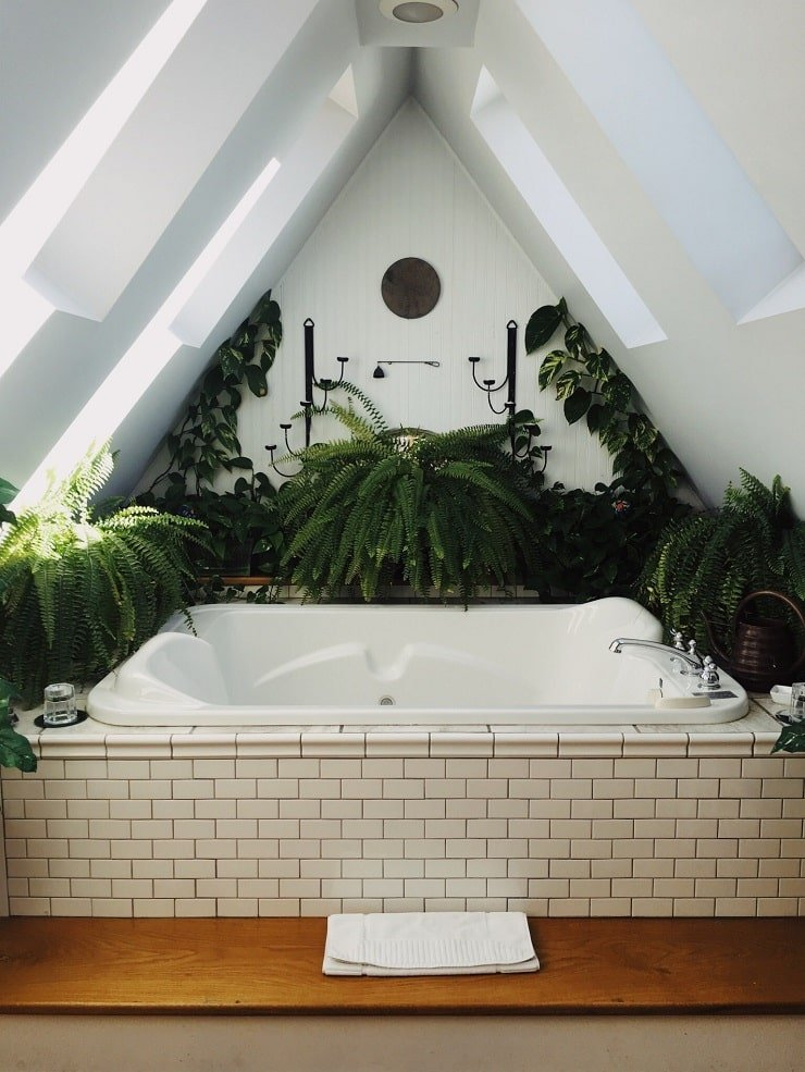 Very Small Attic Bedroom With Plant Feature