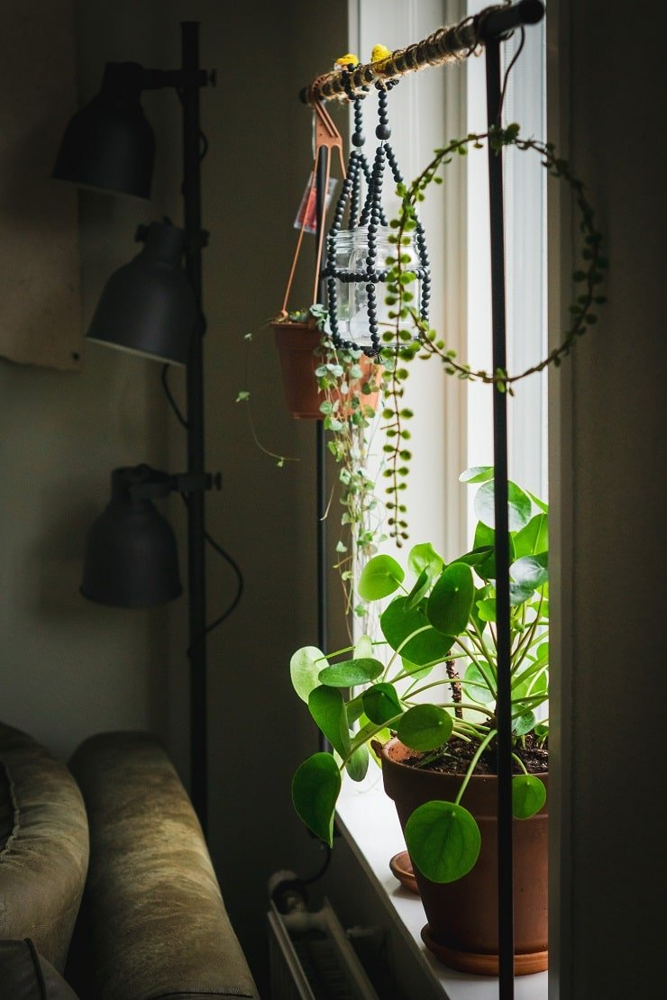Very Small Attic Bedroom With Hanging Plant Rail